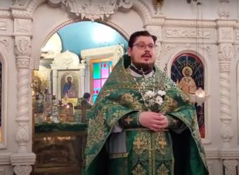 Проповедь протоиерея Сергия Третьякова в праздник Входа Господня в Иерусалим, Вербное воскресенье